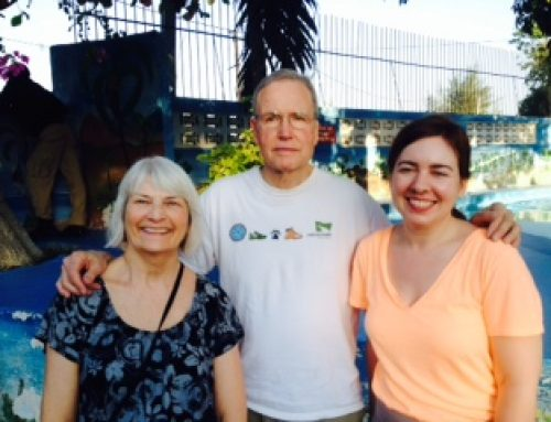 MARCH 2015 VISIT TO HAITI ~  BY DAVID ENTIN