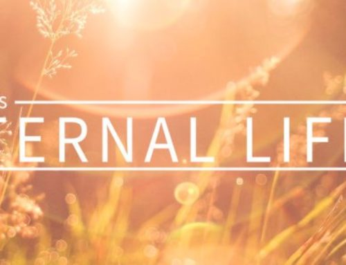 The Words of Eternal Life