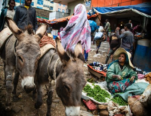 Some Parades Aren't Meant to Be – A Sheltered Palm Sunday